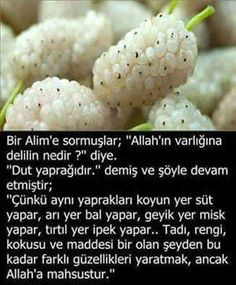 Hamd ve şükür sana ya Rab Muhammed Sav, Allah Islam, Interesting Information, Good Notes, Muslim Quotes, Sufi, Cool Words, Healthy Life, Ale