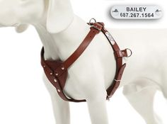 Dog Harness Leather Bags Images
