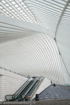 Station Luik-Guillemins architect Santiago Calatrava: Photo by Andre Roosenburg
