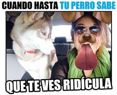 JAJAJAJAJAJAJAJAJAJJA MALVADA SEEAA @andreanrodriguez  Regram from @que_huevada