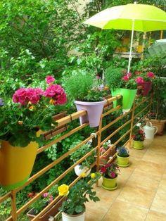 Így varázsolj édenkertet az erkélyből   Balkonada Organic Gardening, Bali, Seeds, Things To Sell, Plants, Collections, Plant, Organic Farming, Planets