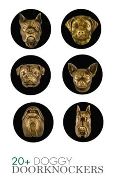 Too cool for school, these doggy door knockers are too fun! The perfect conversation piece, these playful pups are a great housewarming gift and a must-have for any dog owner! Love Your Pet, Great Housewarming Gifts, Too Cool For School, Door Knockers, Goodie Bags, Pet Products, Dog Owners, Fun Crafts, Conversation