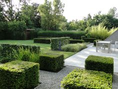 clipped hedges, grasses and contemporary pale patio with gravel paths - Thomas Leplat