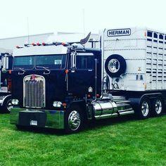Coe Kenworth custom K100 bull hauler