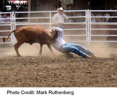 Bragg Creek, Trans Canada Highway, Alberta Travel, Calgary, Rodeo, Festivals, Wrestling, Entertainment, Fun