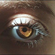 ❁enjoy the little things❁ brown eyes aesthetic, hazelnut eyes, amber eyes color Pretty Brown Eyes, Big Brown Eyes, Blue Brown, Amber Eyes Color, Eye Color, Honey Eyes Color, Hair Color, Hazelnut Eyes, Brown Eye Quotes