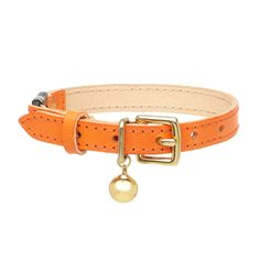 tempesti leather cat collar  Orange.png