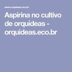 Aspirina no cultivo de orquídeas - orquideas.eco.br