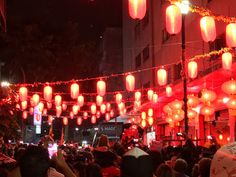 Chinese Spring Festival 2016