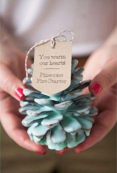 19 Awesome DIY Wedding Favor Ideas - Pine cone fire starter. #diyfavor #weddingfavor