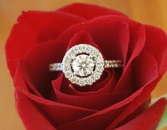 Hearts on Fire Limited Edition Diamond Halo Engagement Ring. Halo Diamond Engagement Ring, Engagement Rings, Fine Jewelry, Jewellery, Fire Heart, Bvlgari, Luxury Jewelry, Luxury Branding, Diamond Jewelry