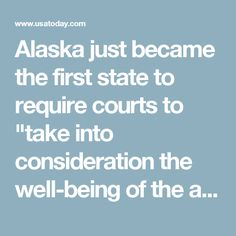 """Alaska just became the first state to require courts to """"take into consideration the well-being of the animal"""" and empower judges to assign joint custody of pets"""