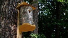 Rustic Wood Birdhouse Design Ideas, Natural Choices for Feathered Friends Homemade Bird Houses, Bird Houses Diy, Fairy Houses, Wooden Garden, Wooden Diy, Salvaged Wood, Rustic Wood, Contemporary Birdhouses, Ceramic Roof Tiles