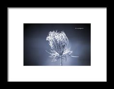 Available on Premium canvas, Framed print, Metal print and more... ARTIST FAN PAGE : https://www.facebook.com/StwayneKeubrick  Feel free to share that Artwork on Facebook / Twitter / Stumbleupon / Pinterest / google+ or more...