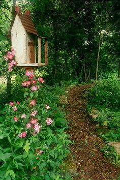 Birdhouse next to woodland path ~ lovely!