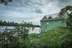 Le delta du Mékong est l'une des régions au monde les plus menacées par le réchauffement climatique. D'ici à 2050, la température devrait augmenter de 3 à 5° celsius et l'eau monter d'un mètre à l'horizon 2100, engloutissant une bonne part des 40 000 kilomètres carrés des neuf bras du Mékong selon la Commission du fleuve... http://www.liberation.fr/planete/2016/02/07/delta-du-mekong-le-triangle-des-inquietudes_1431029