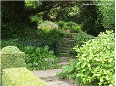 beautiful sloped garden