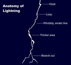 animation news + art — anatoref: Anatomy of lightning Row & Lightning Drawing, How To Draw Lightning, Lightning Tattoo, Lightning Gif, Lightning Nails, Black Lightning, Digital Painting Tutorials, Digital Art Tutorial, Art Tutorials