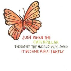 """Just when the caterpillar thought the world was over, it became a butterfly."" Anais Nin"