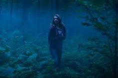 Výsledok vyhľadávania obrázkov pre dopyt les sebevrahu