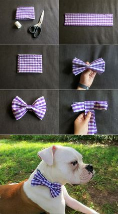 How to make your own dog collar bow tie for your pup. Perfect for those days where you want them to look extra cute. Diy Dog Collar, Dog Collars, Dog Wedding Attire, Bowtie Pattern, Dog Clothes Patterns, Dog Bows, Dog Bow Ties, Dog Crafts, Dog Hacks