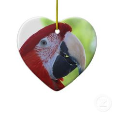 "Princess Green Wing Macaw Ornaments $22.75 ""I Love my Green Wing Macaw"" on back.  Princess, the Green Wing Macaw, showing off for the camera. Beautiful bright red crested head, with green and blue feathers on her wings. These gorgeous birds will live to approximately 125 years in captivity. From the Macaw family, but often referred to as a parrot because of their ability to mimic, or ""talk""."