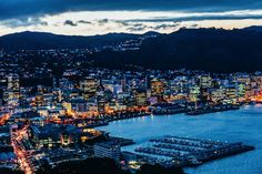 11 Unique Experiences You Need To Have In New Zealand (12)