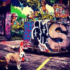5 pointz nyc places i 39 ve been pinterest graffiti for Nas mural queens