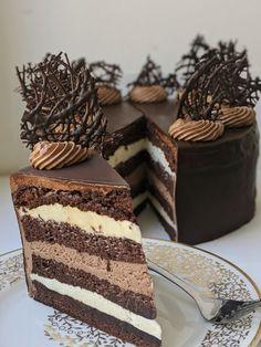 Torte Recipe, Sponge Cake Recipes, Chocolate, Amazing Cakes, Cake Decorating, Dessert Recipes, Food And Drink, Cooking Recipes, Yummy Food
