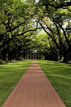 Oak Alley Plantation - Louisiana- Usa