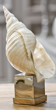 A delightful way to bring oceanic elements into the home, the Conch Shell imparts an upscale coastal look on a coffee or dining table.