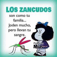 Funny Spanish Jokes, Spanish Humor, Spanish Quotes, Funny Jokes, Spanish Inspirational Quotes, Words Quotes, Me Quotes, Mafalda Quotes, Funny Phrases