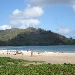 The beach that was a two minute walk from our rental on Hanalei Bay (24940440)