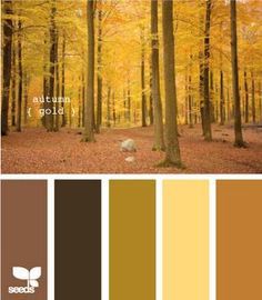 Color schemes - Color scheme - autumn... Color schemes & trends Preview – Pattern Description Color Harmonies: complementary, analogous, triadic color schemes ! autumn – Source –