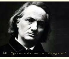 """""""I have cultivated my hysteria with pleasure and terror. Haven't we all Baudelaire, haven't we all. Book Writer, Book Authors, Poetry Lessons, Essayist, Writers And Poets, Iconic Photos, Portraits, I Love Books, History Books"""
