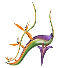 "This bird-of-paradise (Strelitzia reginae) allows you to stand a bit taller, like a tropical exotica.  This shoe is called ""Greta Gazebo."""