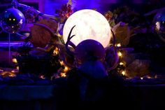 #night #alter #crystalball #antlers #magick #wild #skull #ulantia #shambhalamusicfestival