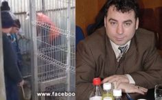 Public servants in Navodari, Romania, pound stray dogs countless times while laughing! Time to act