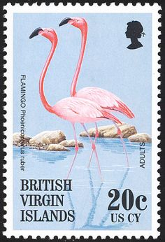 British Virgin Islands stamp, reminds me of the start of the Miami Vice TV series introduction. Perhaps these two are the Crockett and Tubbs of the pretty flamingo world. Postage Stamp Design, Going Postal, Pink Bird, Vintage Stamps, British Virgin Islands, Tampons, Stamp Collecting, Mail Art, Pink Flamingos