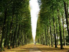 Soest, The Netherlands. Royal walk.
