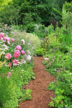 Pretty path in an english cottage garden , … Cottage garden. Pretty path in english cottage … Backyard Vegetable Gardens, Ponds Backyard, Outdoor Gardens, Garden Paths, Garden Landscaping, Garden Bark, Landscape Design, Garden Design, The Secret Garden