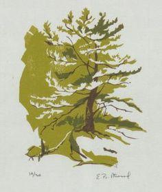 pine.jpg (287×340)