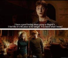 Hahaha, I love how they look like they're seriously doubting Harry's mental abilities at this moment. (Harry Potter and the Half-Blood Prince)