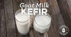 Goat Milk Kefir