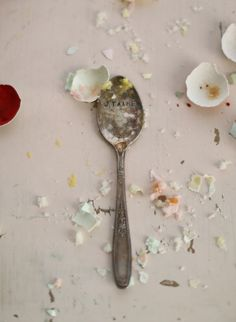 Remains of the Easter Cake, Elizabeth Messina