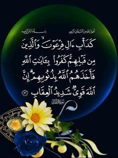 Quran Tilawat, Quran Verses, Islam, Quote