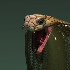 http://steplont.blogspot.com/2014/02/blog-post.html CG rigged 3d model cobra snake Cobra 3D Model 3d cobra snake tutorial 1 __ 3D king cobra snake skeleton animal reptile joseclemente serpent skull poisonous snakeskin dangerous deadly beast teeth bite india asia crawling zoology