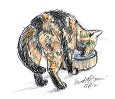 The Creative Cat - Daily Sketch Reprise: Kelly Has a Drink, 2012