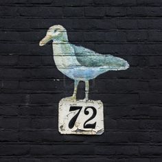 Painting of a seagull above a house number