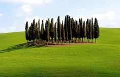 Panorami della #Toscana nei dintorni del #borgo: Val d'Orcia - Views of #Tuscany in the surroundings of the #village: Val d'Orcia.